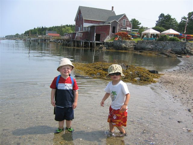 area attractions the shorehouse on orrs island maine